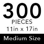 Medium Size - 300 Pieces ($18.95)